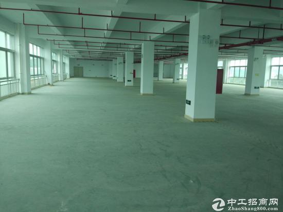 松岗东方大厂房12000平业主低价急售 产权清晰 无纠纷 有红本