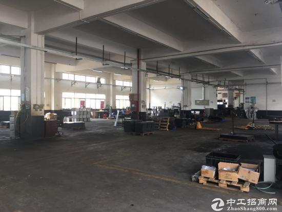 坪山 碧岭新出1-2层3000平米独院厂房出租
