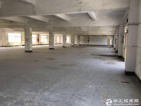 坪山 碧岭新出一楼500平方原房东厂房5.5米