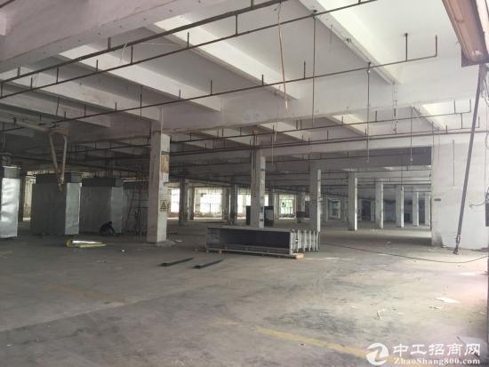 坪山 坑梓深汕路边新出一楼厂房1200平方厂房出租