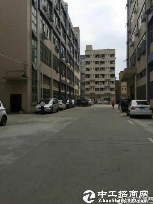 深圳石岩高速出口大型园区新出 原房东 独栋红本厂房6000平