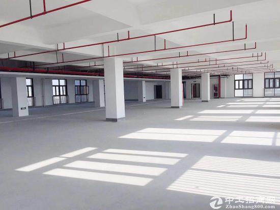 闵行颛桥104园区,生产仓储中试300~8999平