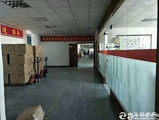 龙华油松新出楼上精装修1700平出租-图4