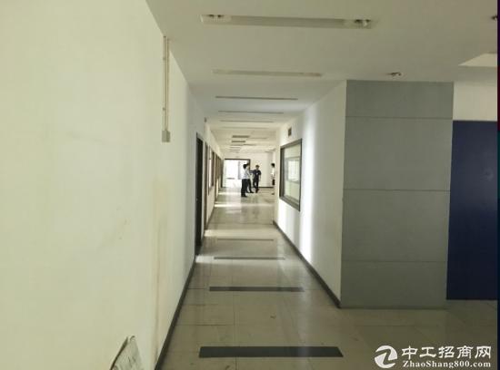 清湖独栋厂房单层1800平带装修厂房出租,免中介-图4