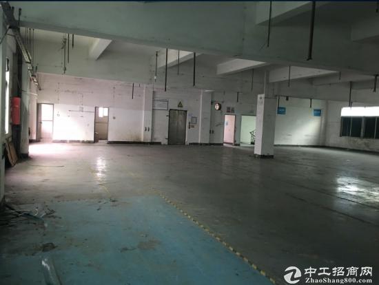 清湖独栋厂房单层1800平带装修厂房出租,免中介