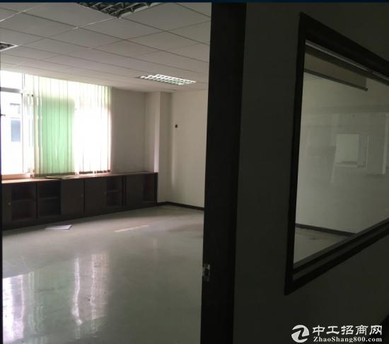 清湖独栋厂房单层1800平带装修厂房出租,免中介-图3