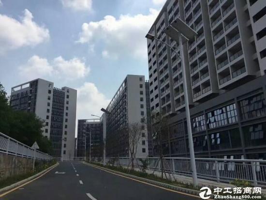 龙岗坪地150000平方享受高新补贴全新红本厂房可分层出租