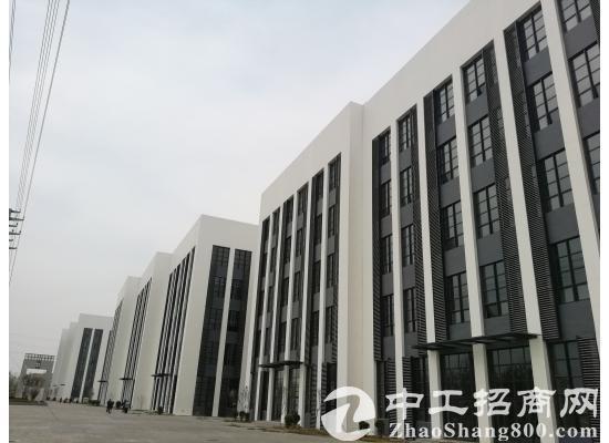 栾城西环标准厂房 5层高每层5.1米 租金3.5毛起