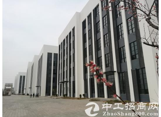 栾城西环标准厂房 5层高每层5.1米 租金3.5毛起-图2