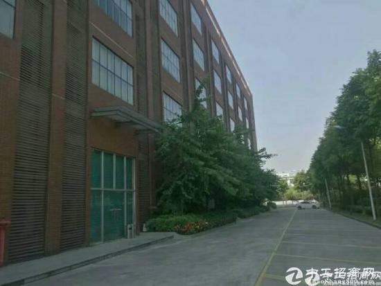 福永沿江高速出口附近新出楼上2600豪华装修出租