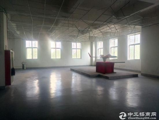 高新瞪羚路1070平的标准厂房便宜出租