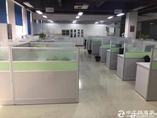 石岩 办公贸易厂房500平至800平带装修招租