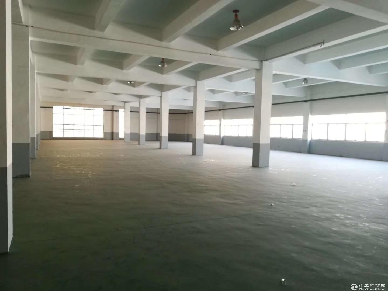 自贸区保税区底层6000平 层高8米 物业直租