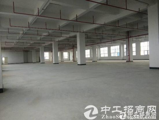 厚街陈屋大型工业区标准厂房1-3楼12000平米招租,水电齐全,交通