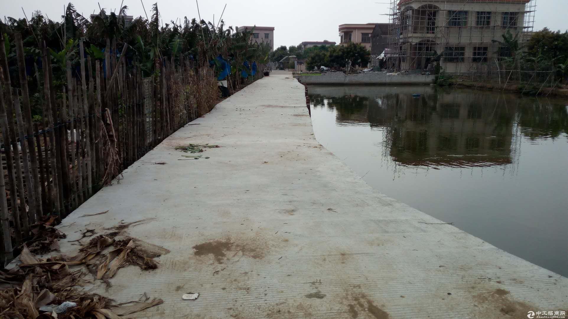 出租 港口中南村附近 一楼仓库1800方租10元/方新建铁皮