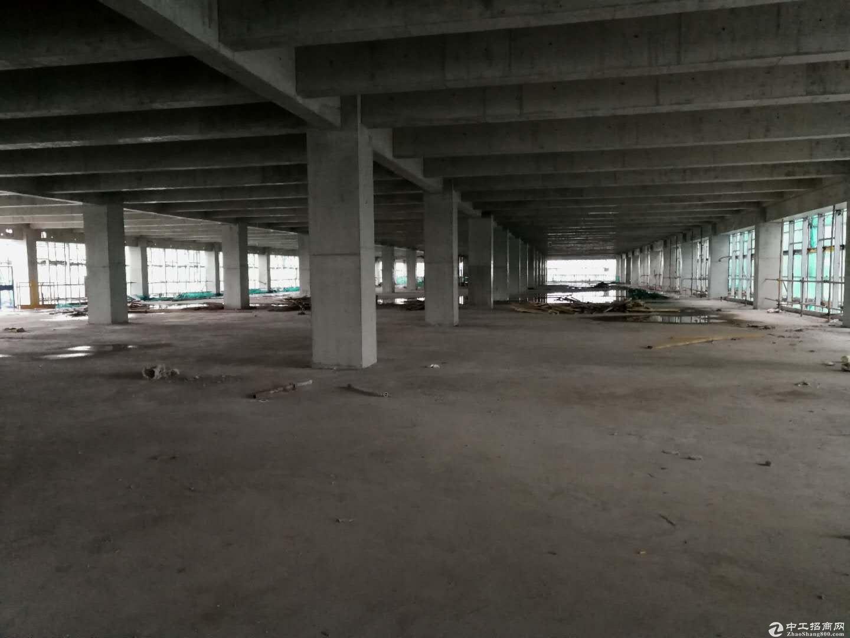 松山湖片区寮步全新红本高端厂房 (开发商)-图5