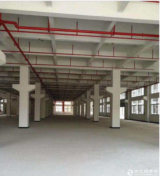 东城周屋成熟工业园新空出一楼2680平 带牛角豪华装修