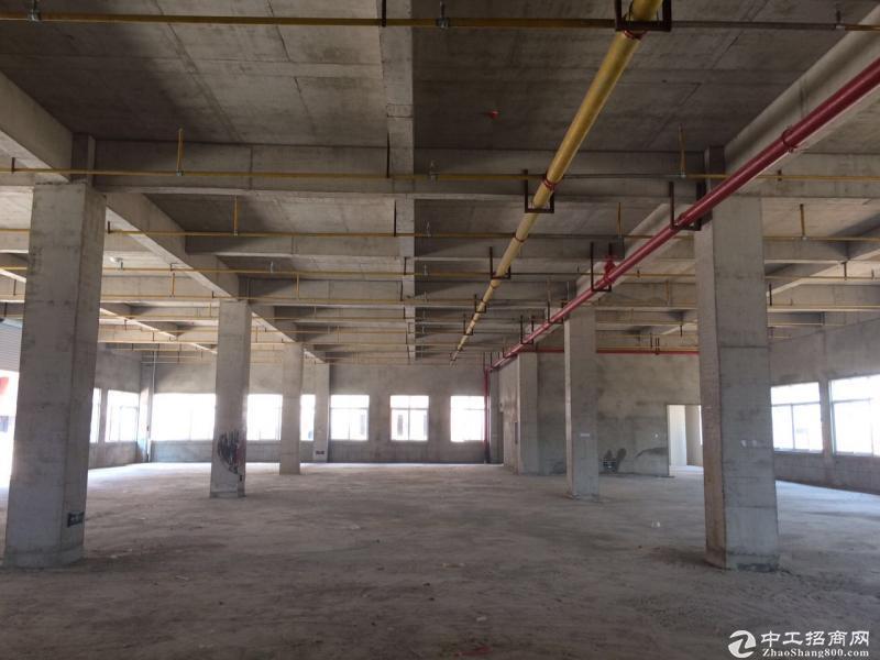 武汉市东西湖区5523平方米独栋标准工业厂房出售(可分割)-图2