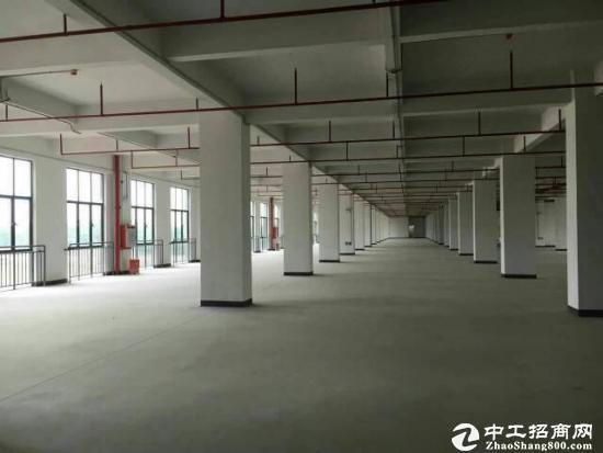 厚街溪头标准独院厂房出租,厂房3层5900平方厂房配有消防喷