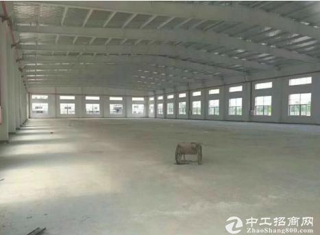 龙华单一层全新钢构厂房5300平方,滴水位10米