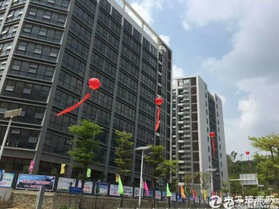 龙岗坪地高新产业园15万平方可享受高新补贴