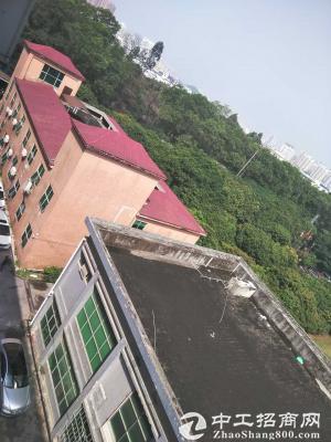 龙岗红本独院厂房12600平米出租可分租