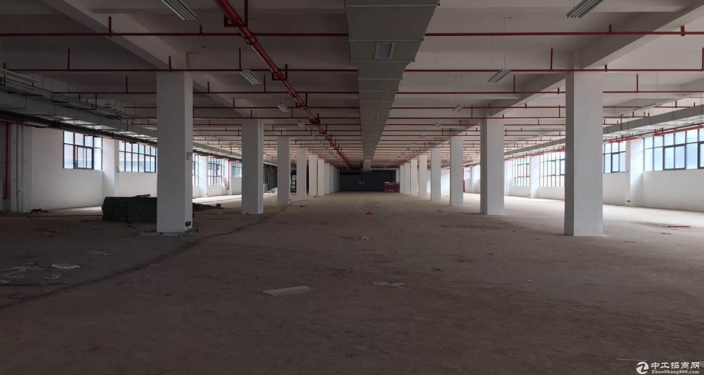 四川遂宁4层工业电子厂房12000平,消防安保齐全-图2