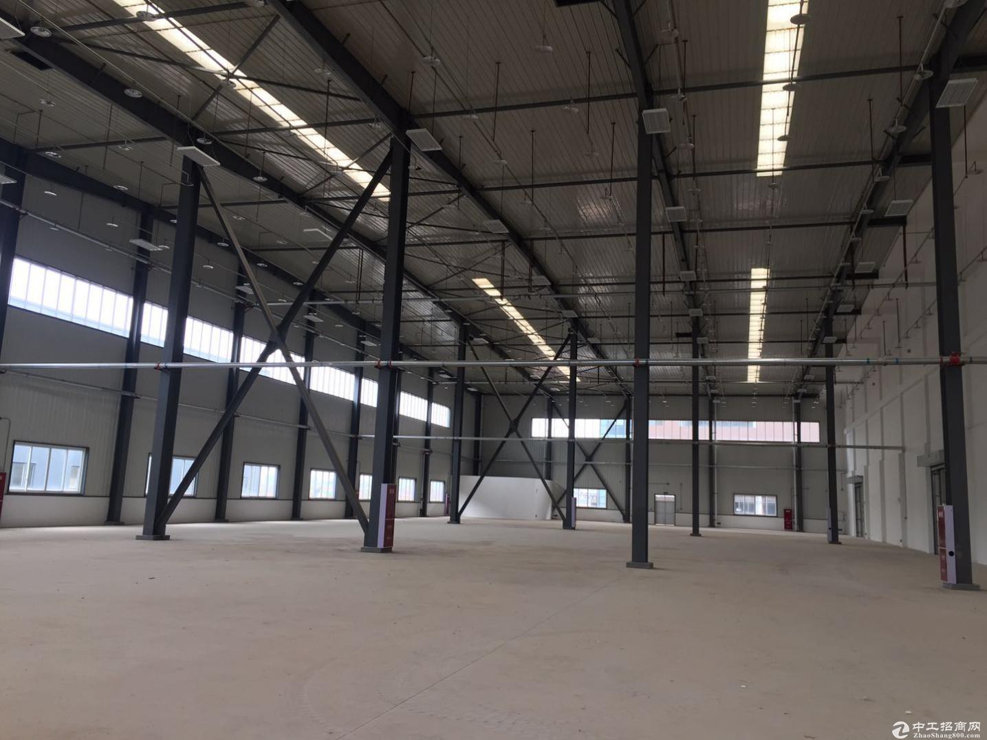 四川遂宁标准仓库12000平出租,全钢架结构,高13.2米