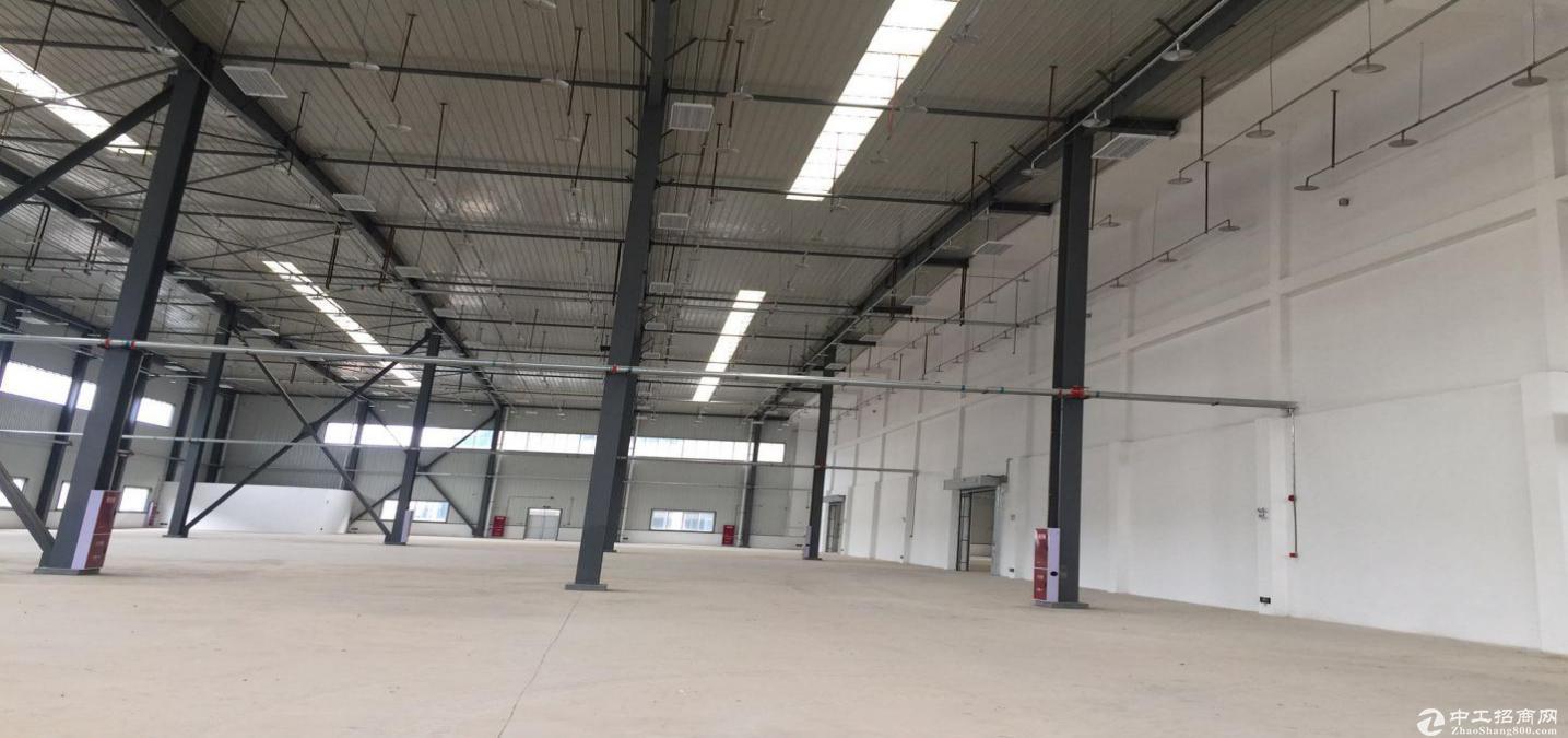 四川遂宁标准仓库12000平出租,全钢架结构,高13.2米-图2