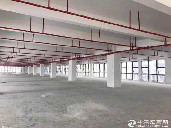 坪地 150000平红本厂房,有喷淋,享高新补