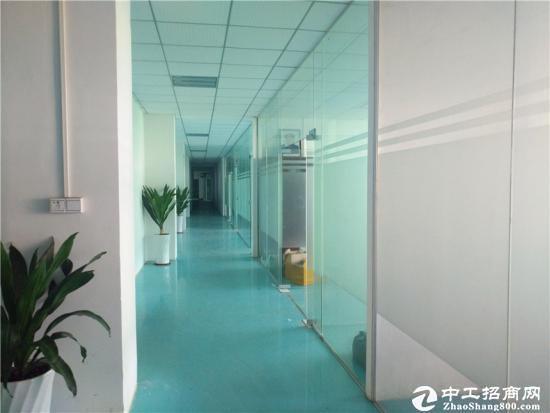 坪山医疗器械产业园红本厂房1200平出租可分租