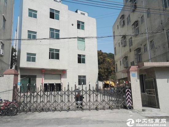 坪山 碧岭经典小独院一楼520平厂房出租