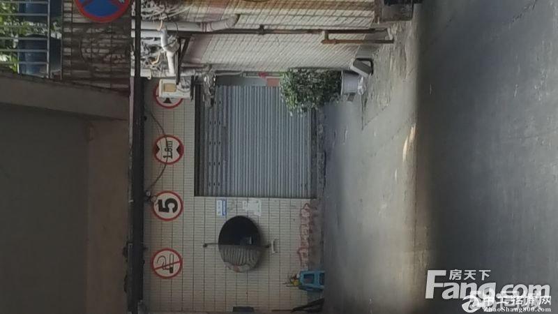 商圈29-89万卖南坪主干道29—129㎡厂房仓库