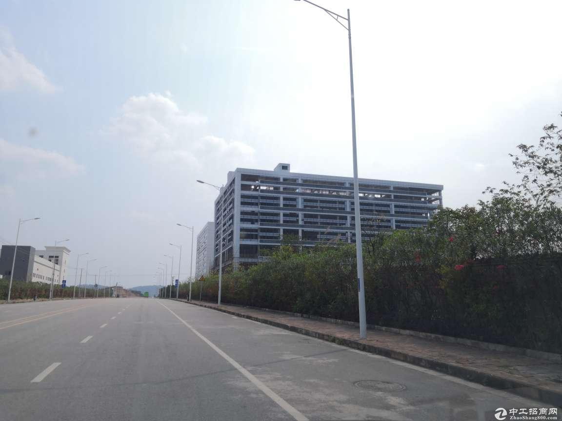 【出租】6.6米高大型全新智能化厂房火爆招商,政策扶持,