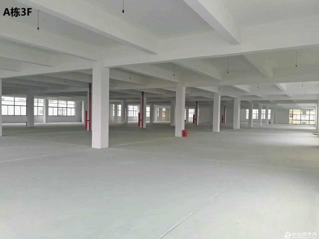 直招2000平5000平1万平厂房仓库,优质
