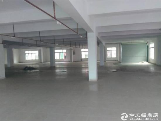 [厚街厂房]楼上标准厂房出租800-1200平.拎包生产