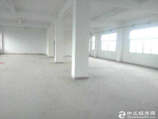 龙岗坪地楼上480平标准厂房出租,带精装办公室