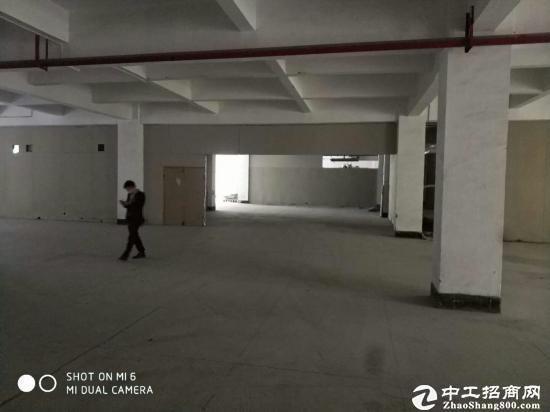 坪山碧岭1200平方米带装修楼上厂房招租