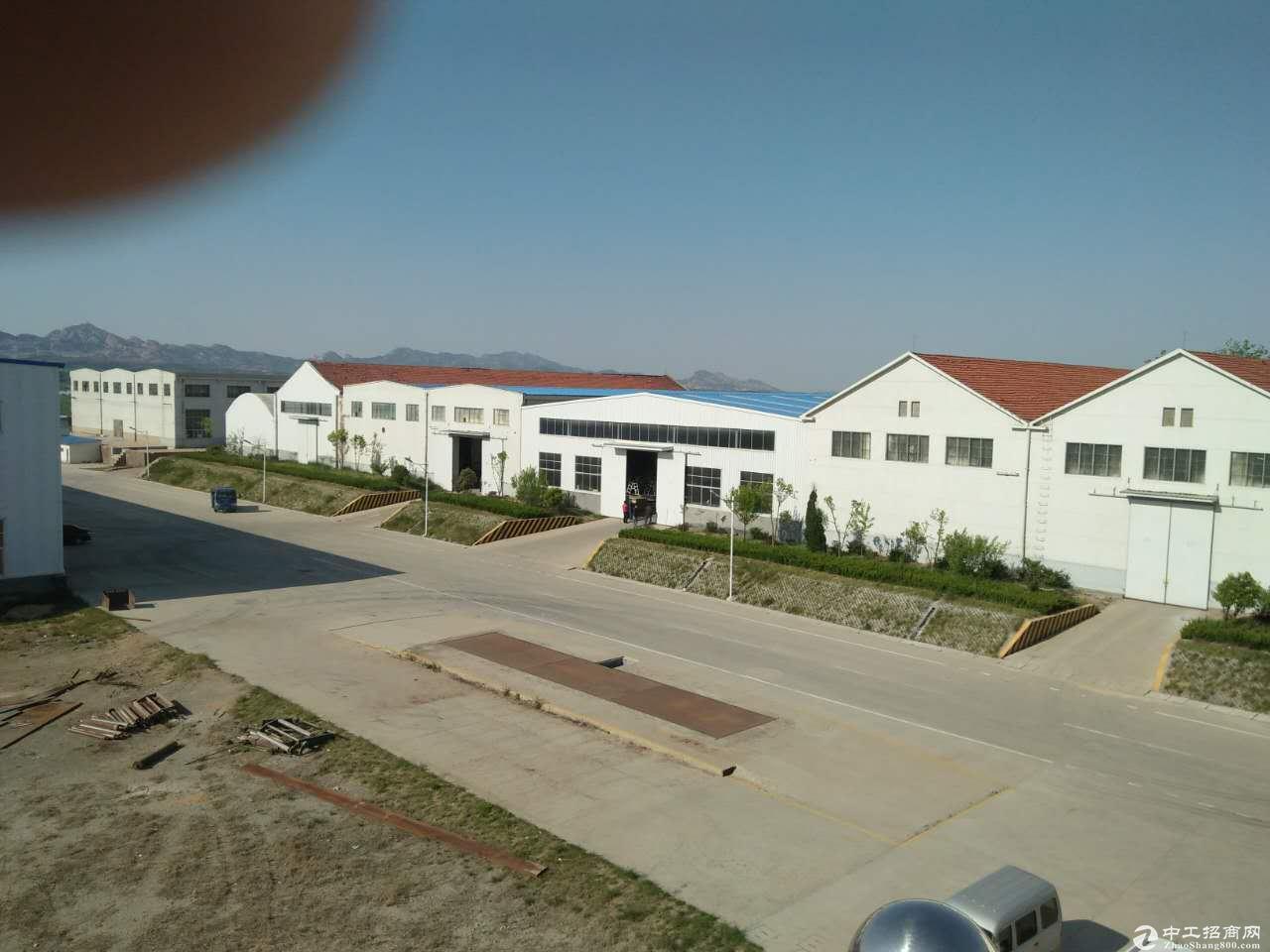 黄岛区60亩国有工业用地转让