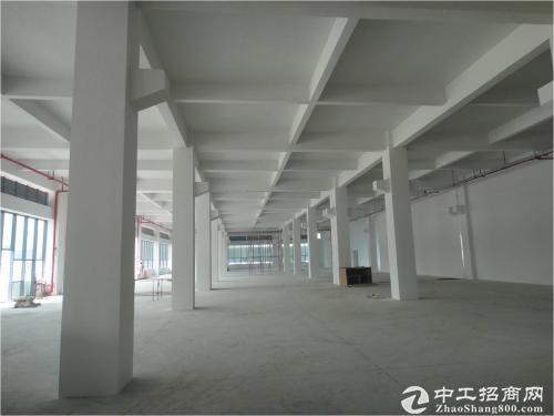 石排原房东分租楼上2500方上市公司形象厂房