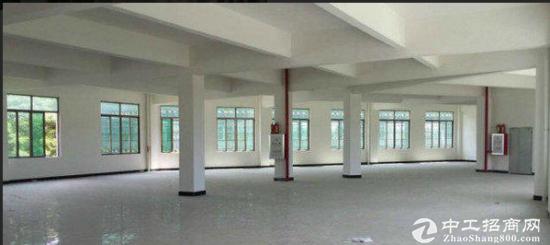 莞城区标准厂房一楼1500平