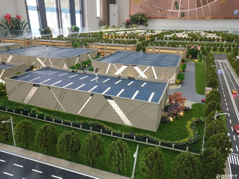 独栋钢构厂房 面积1000-5000平 租赁火热预订中