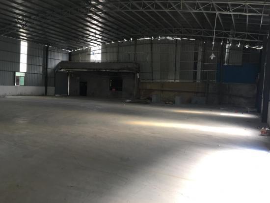 东莞南城区单一层钢构1100平米,滴水7米