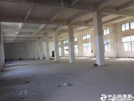 莞太大道南城路段附近原房东一楼500平厂房招租楼高5米