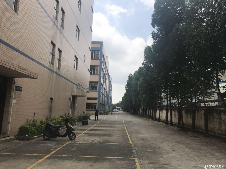 新塘32600平方(可分租)标准厂房招租