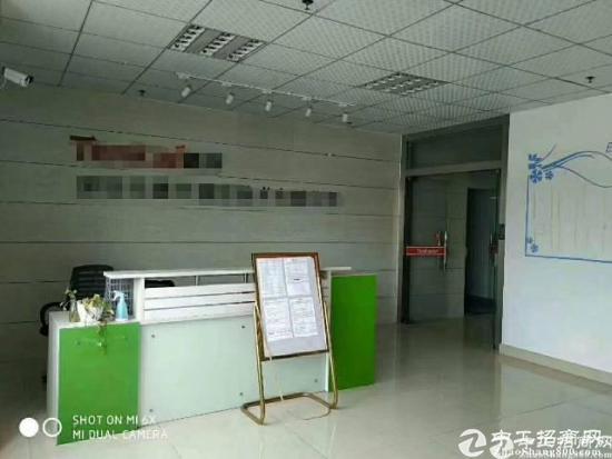 公明新出楼上1300平米带豪华装修办公室前台厂房