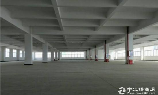 莞城区标准厂房二楼2400平