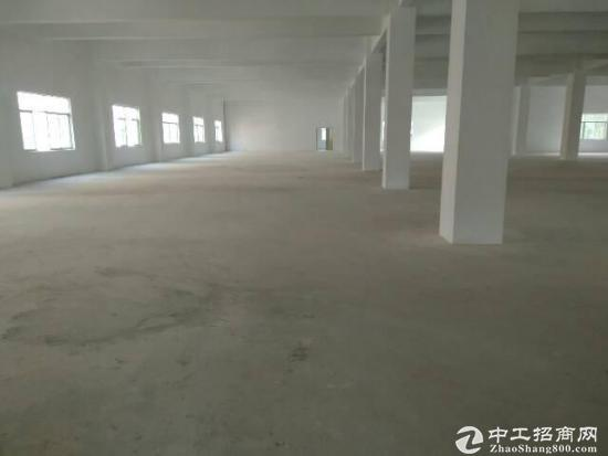 东莞南环路旁全新9800平厂房12元招租