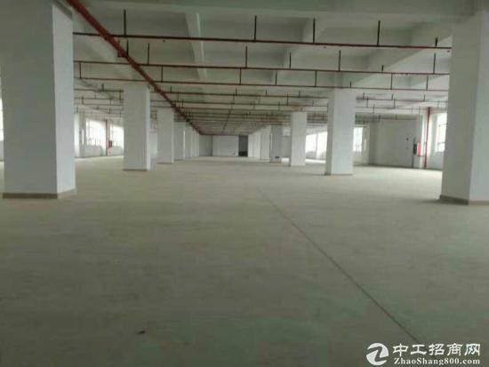 龙岗南联地铁口新出楼上带装修厂房出租2600平米