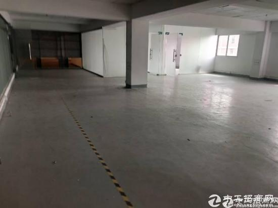 豪华装修无转让费坪山碧岭原房东500平方厂房出租厂房工业园形